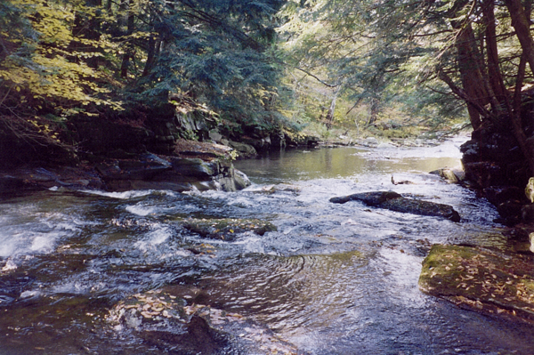Neversink River